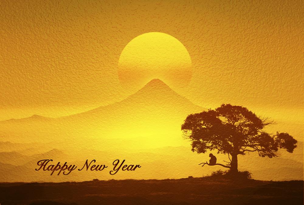 新年明けましておめでとうございます。 2016年 元旦